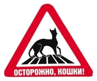 Rus_-pozor-kočky